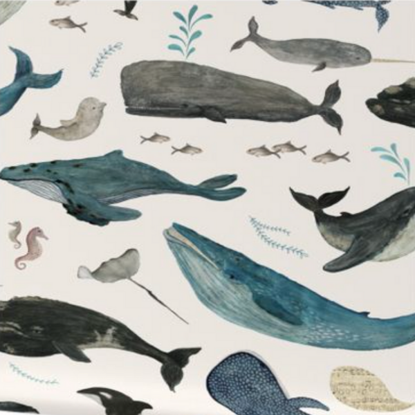 Spoonflower – Katherine Quinn Whale Song for kid's bedrooms as seen in rooomy magazine