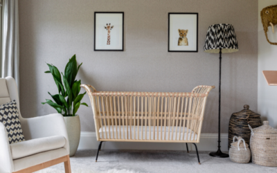 Wonderful Nursery or a Baby Girl